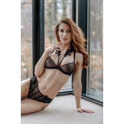 Set out of plunge underwired bra with embroidery and brief